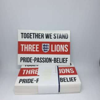 Together We Stand Three Lions Stickers