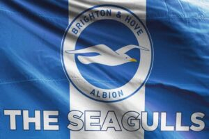 The Seagulls: Brighton & Hove Albion FC Flag