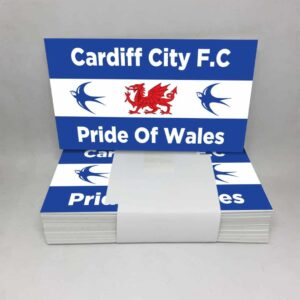 Pride of Wales: Cardiff City FC Stickers