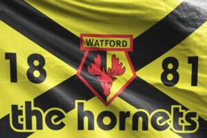 The Hornets 1881: Watford FC Flag